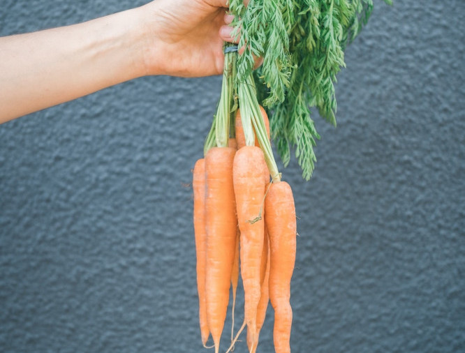 the-carrot-on-the-end-of-the-stick